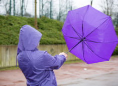 39940028 – a people is fighting with an umbrella in the wind.