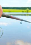 Pêche à Ligne