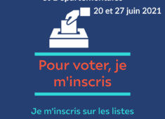 Red White and Blue Voter Registration Promotion (2)